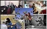 باشگاه خبرنگاران - ۷۸ درصد فعالان مشاغل خانگی استان زنجان را بانوان تشکیل می دهند