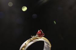 نمایشگاه بینالمللی طلا و جواهرات