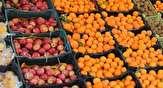 باشگاه خبرنگاران - محدودیتی برای عرضه سیب وجود ندارد/ افزایش هزینه انبارداری دلیل اصلی نوسان قیمت پرتقال