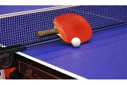 تنیس روی میز از بهترین رشتهها برای همگانی کردن ورزش