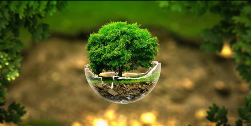 محیط زیست در اسفند ماه چگونه بود؟