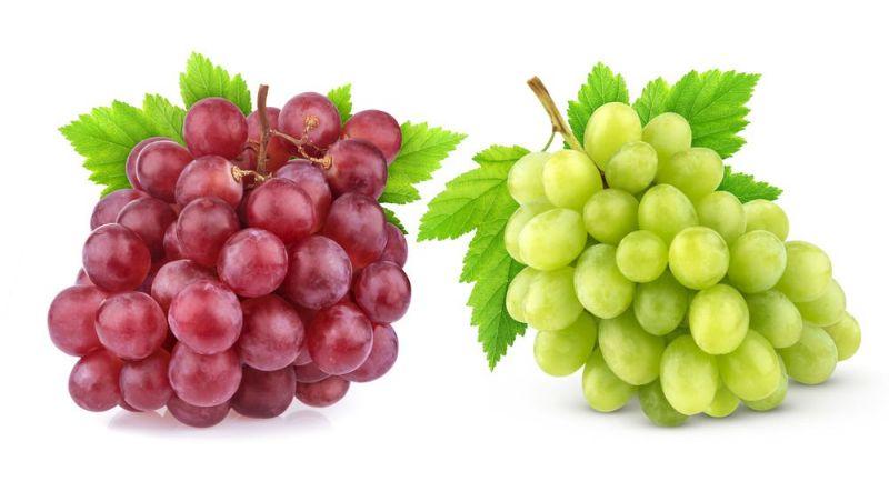 با مصرف این میوه سرطان را شکست دهید