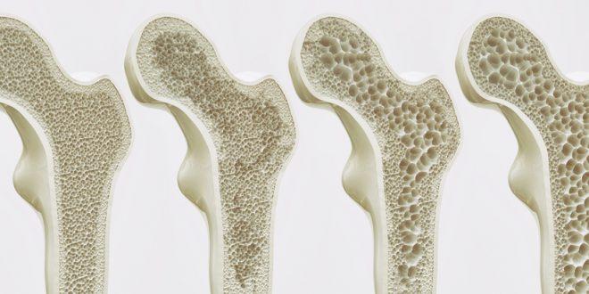 رفع دردهای مفصلی با «حلوای مسقطی لاری» / این حلوا شما را از شر بوی بد دهان خلاص میکند