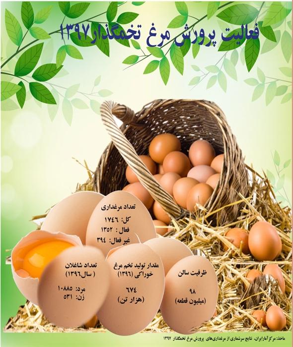 تولید ٦٧٤ هزار تن تخم مرغ در سال گذشته