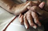 باشگاه خبرنگاران -ژن در ابتلا به آلزایمر موثر است؟+ توصیههای غذایی ویژه مبتلایان به دمانس