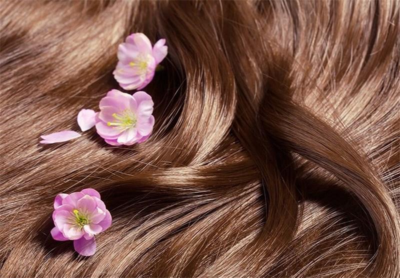چند نکته برای داشتن موهای سالم/ هر روز به موهایتان شامپو نزنید