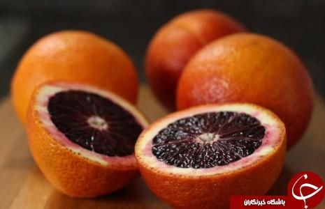 حقایقی شگفت انگیز از یک پرتقال توسرخ به نام پرتقال خونی! / چرا پرتقال خونی، خونین است؟!