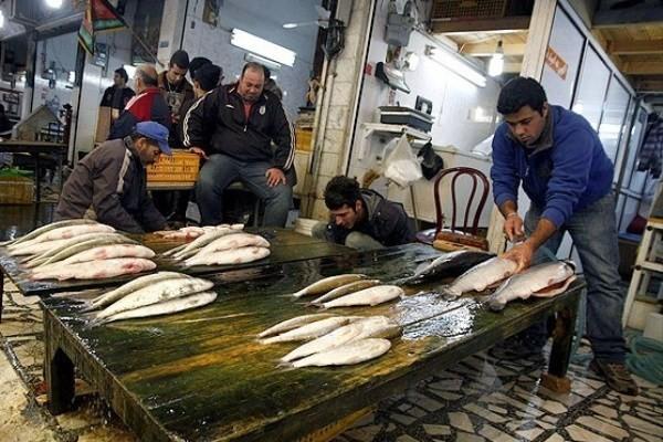 کمبودی در بازار ماهی شب عید وجود ندارد/قیمت هر کیلو قزل آلا سر مزرعه ۱۸ هزار تومان