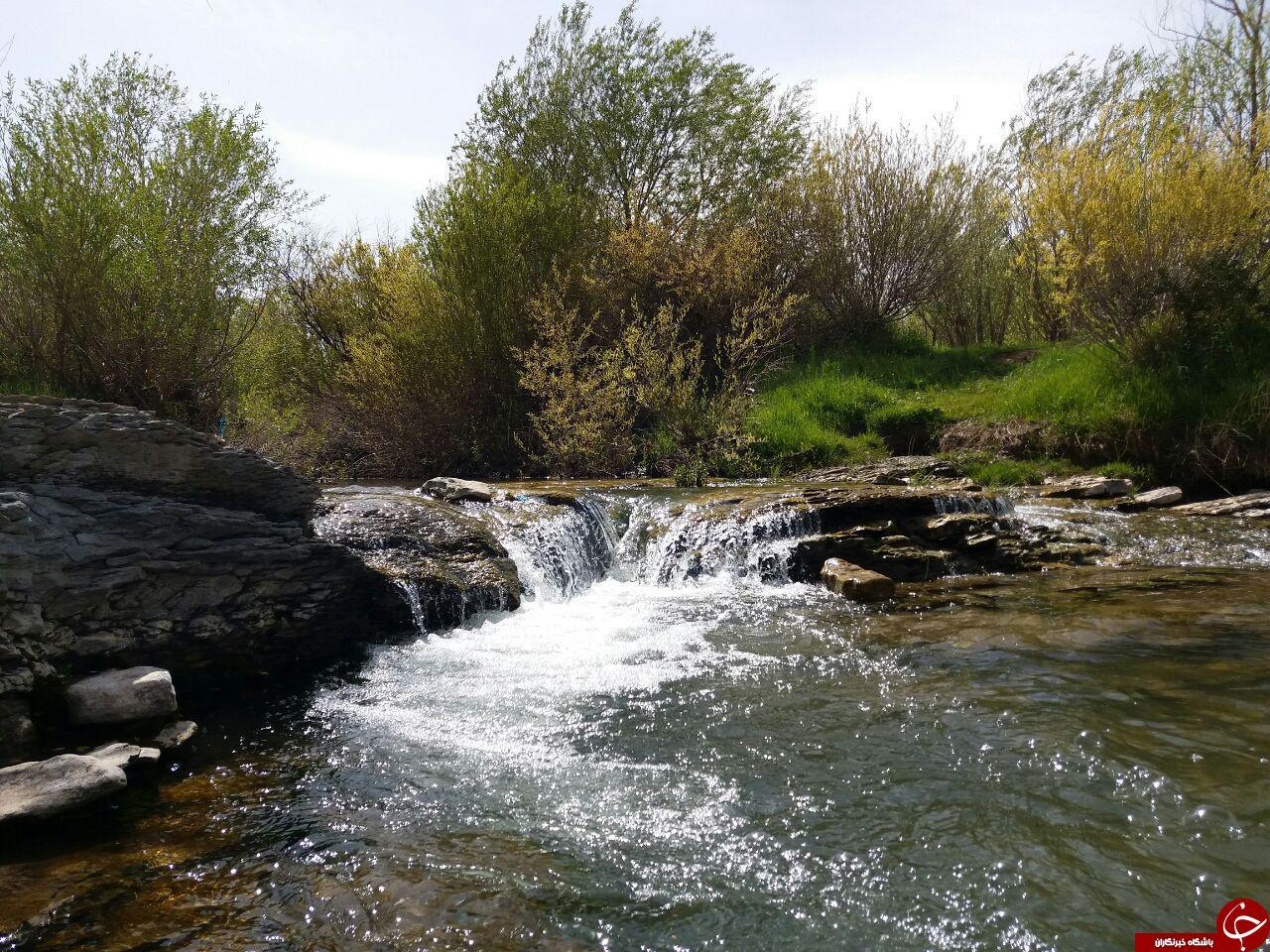 نمایی از طبیعت زیبا و بکر در روستای گنده جین + فیلم و تصاویر