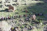 باشگاه خبرنگاران -کوهپیمایی خانوادگی در ناغان برگزار شد