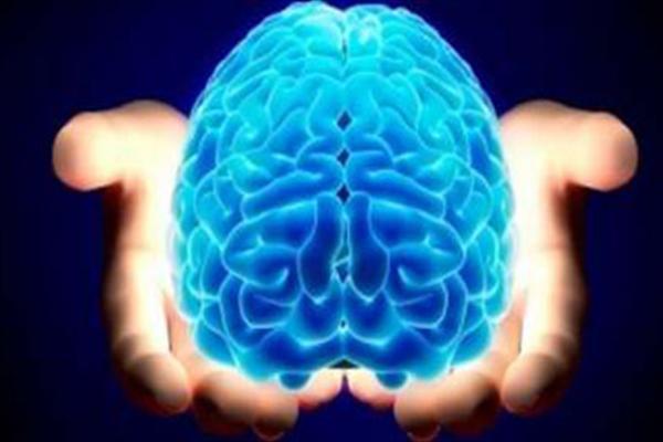 مغز انسان میتواند ساختارهای هندسی ۱۱ بُعدی خلق کند
