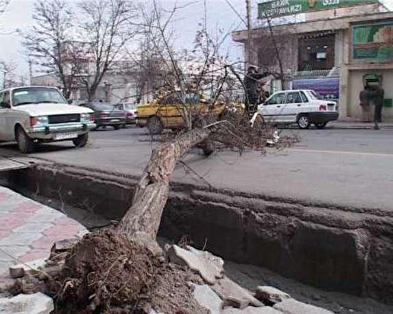 باشگاه خبرنگاران - خسارت ۱.۴میلیارد ریالی تند باد به شبکه برق مهاباد
