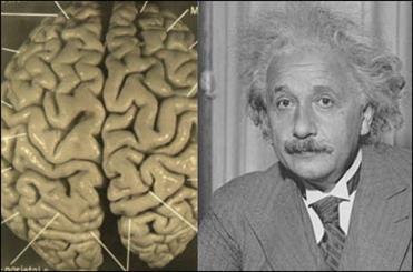 حقایقی مرموز و عجیب که با شنیدن آنها هوش از سرتان می پرد