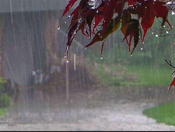باشگاه خبرنگاران -افزایش ۱۶ درصدی بارندگی در استان ایلام