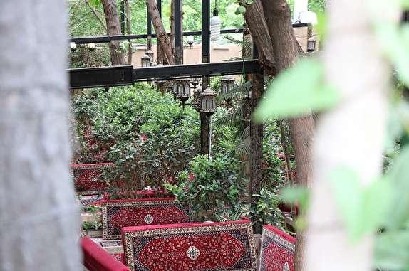 باشگاه خبرنگاران - درآمد ماهانه 40 میلیون تومانی با خشک کردن باغ های فرحزاد