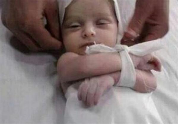 کودک هشت ماهه فلسطینی در میان شهدای روز گذشته در درگیریهای نوار غزه+ عکس