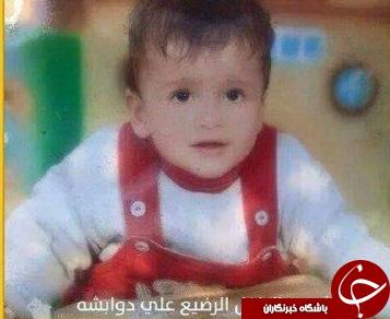 صهیونیستها متخصص در کودککشی / از عماد ۶ ماهه تا لیلی ۸ ماهه+ تصاویر