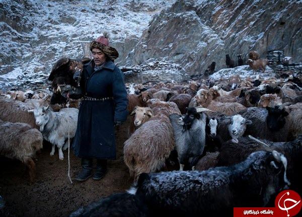 عکس منتخب نشنال جئوگرافیک از قزاق چادرنشین