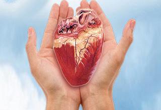 پزشکی که رکورددار جلب رضایت اهداء عضو است