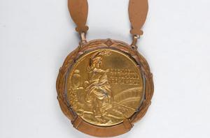 دزدی مدال در رشته بوکس