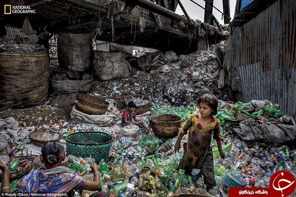 پلاستیک بلای جان طبیعت+ تصاویر