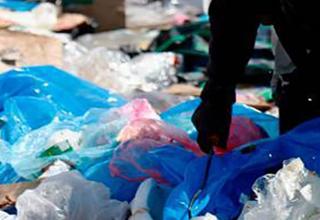 صدایی در میان زبالهها که زن رهگذر را به صحنهای دردناک رساند+تصاویر