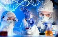 تولید کپسول گیاهی درمان زخم معده واثنی عشر در دانشگاه علوم پزشکی مشهد