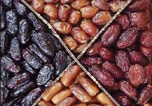 بازار خرما در ماه رمضان متعادل است/ 20 درصد خرمای تولید کشور صادر میشود