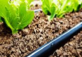 باشگاه خبرنگاران -اجرای ۱۹ هزار متر لوله گذاری در مزارع کشاورزی بوئین زهرا