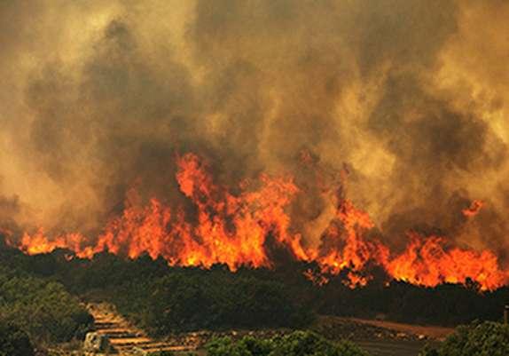 باشگاه خبرنگاران - اختصاص یک میلیارد و ۲۰۰ میلیون تومان اعتبار برای  مقابله با آتش سوزی جنگلها