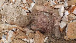 توضیحات رئیس پزشکی قانونی استان تهران در خصوص خبر کشف مومیایی در شهرری