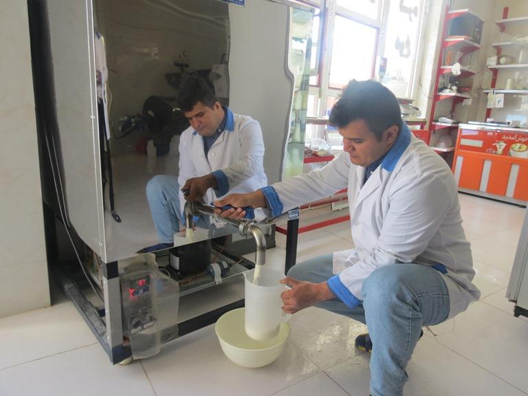 شیر سنتی، همان شیرهای برگشتی کارخانه است/شهروندان از خرید لبنیات سنتی و بدون شناسنامه خودداری کنند