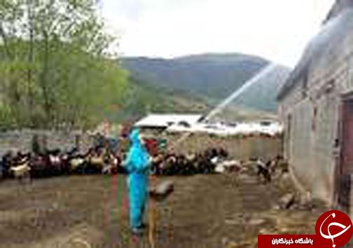 نگاهی گذرا به مهمترین رویدادهای دوشنبه ۳۱ اردبیهشت ماه در مازندران