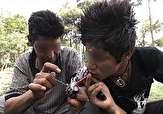 باشگاه خبرنگاران -مهر تایید بهزیستی بر آمار 10 هزار نفری دانشآموزان معتاد در کشور