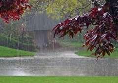 باشگاه خبرنگاران -ادامه بارش ها تاآخر هفته