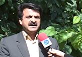 باشگاه خبرنگاران - فوت ۱۲ نفر در کمربندی بروجرد در ۲ سال گذشته