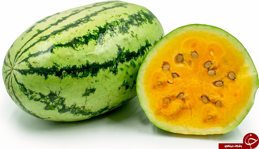خواص هندوانه زرد / هندوانه آناناسی درمان واقعی برای بدن