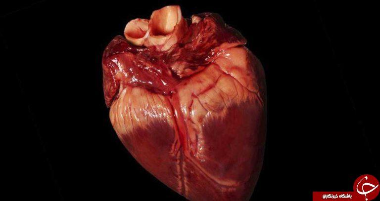 همه چیز درباره روماتیسم قلبی / چه کسانی بیشتر به روماتیسم قلبی دچار میشوند؟