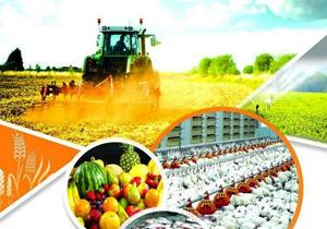 معرفی ۱۷۴ طرح کشاورزی به بانک جهت دریافت تسهیلات