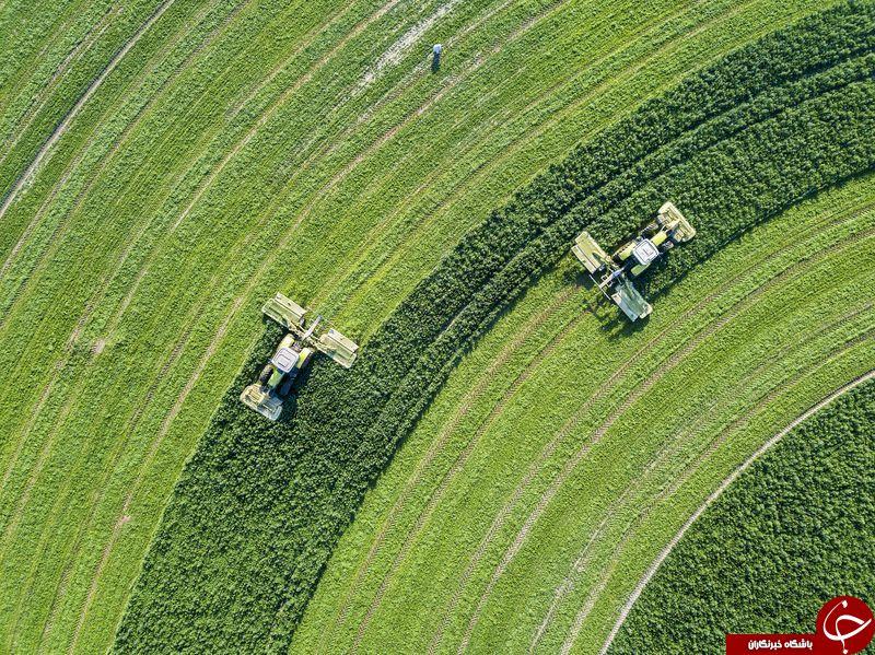 تصویر زیبا از زمین های کشاورزی