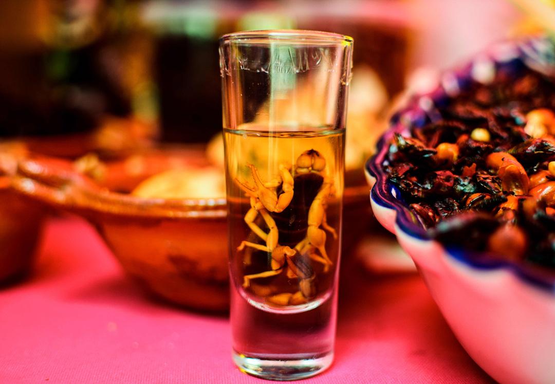 منوی حشرات، ایده ی جدید یک رستوران مکزیکی/ از کنسرو عقرب تا کرم خاکی!