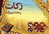 باشگاه خبرنگاران -فعالیت بیش از 600 پایگاه جمعآوری زکات فطریه در همدان