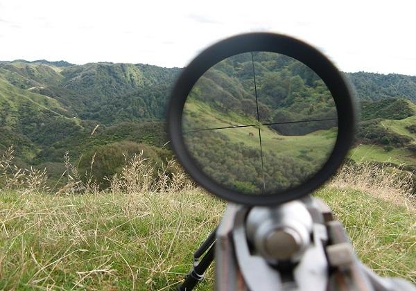 80 درصد مجوزهای شکار برای شکارچیان داخلی و خارجی بود