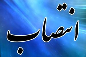 سرپرست دانشگاه سهند تبریز منصوب شد