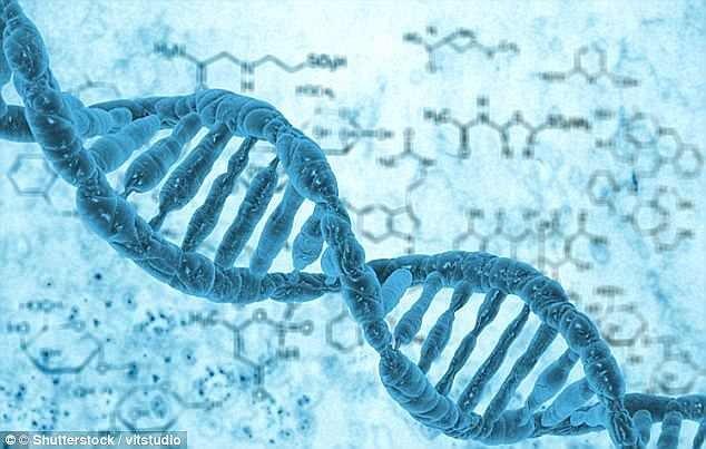 ذخیره اطلاعات شخصی شهروندان بر اساس DNA آنها