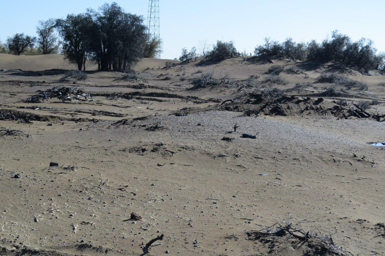 عملیات مالچ پاشی کانون های گرد وغبار نرماشیر