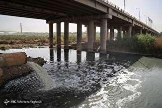 فاجعه زیستمحیطی در کارون