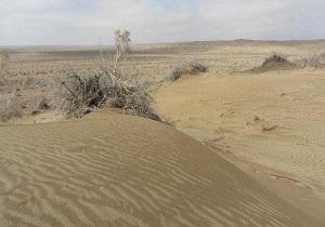 خسارت ۲۰ میلیارد تومانی فرسایش بادی در خراسان جنوبی