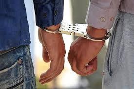 دستگیری دو سارق حرفه ای در ایلام