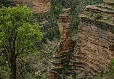 شهروندخبرنگار لرستان؛ مناظری چشمنواز و آرامبخش در کوهدشت + فیلم